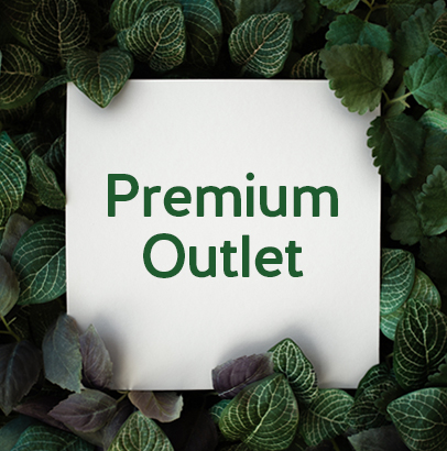 Premium Outlet   Event